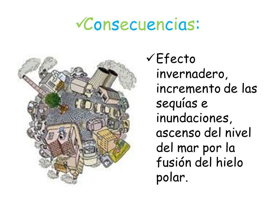 Consecuencias: Efecto invernadero, incremento de las sequías e inundaciones, ascenso del nivel del mar por la fusión del hielo polar.