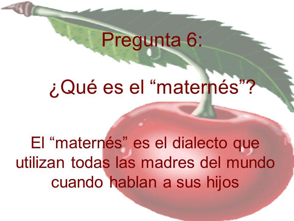 Pregunta 6: ¿Qué es el maternés