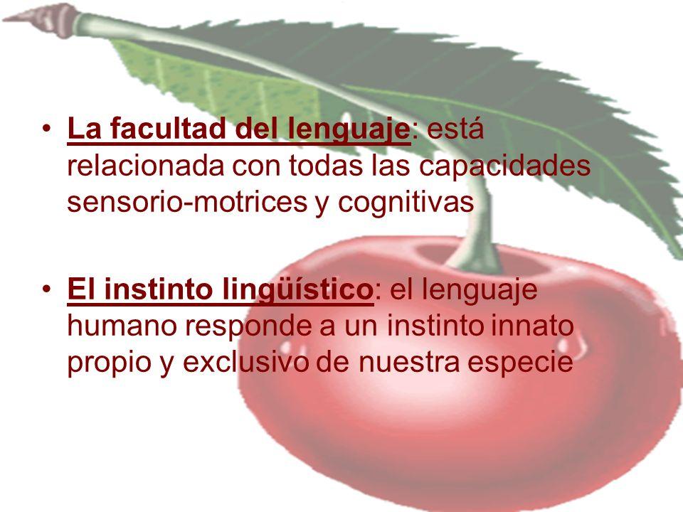 La facultad del lenguaje: está relacionada con todas las capacidades sensorio-motrices y cognitivas