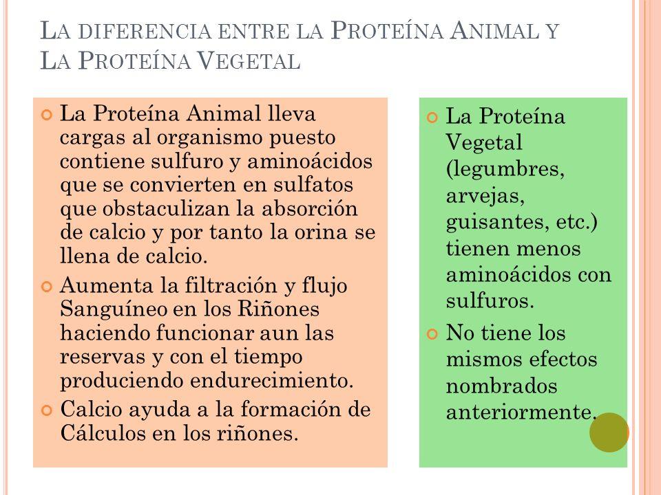 La diferencia entre la Proteína Animal y La Proteína Vegetal