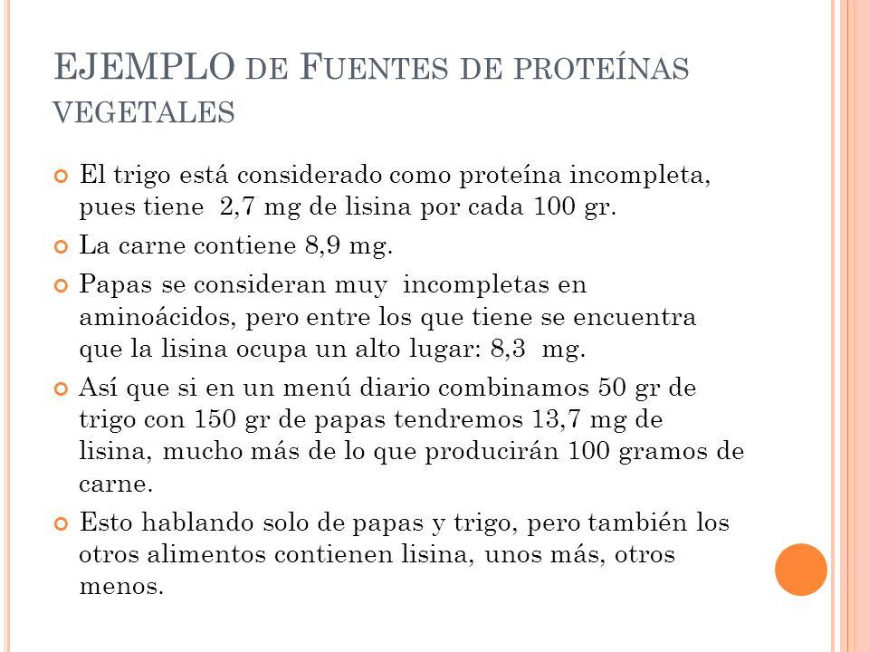 EJEMPLO de Fuentes de proteínas vegetales