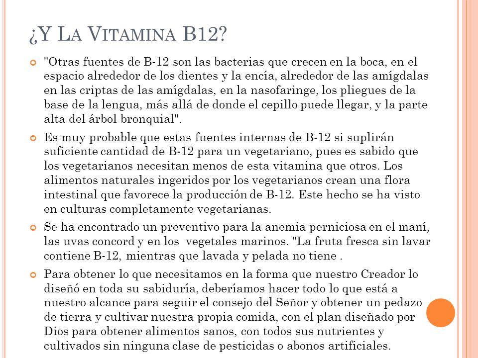 ¿Y La Vitamina B12