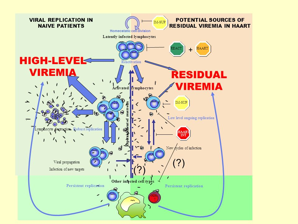 HIGH-LEVEL VIREMIA RESIDUAL VIREMIA
