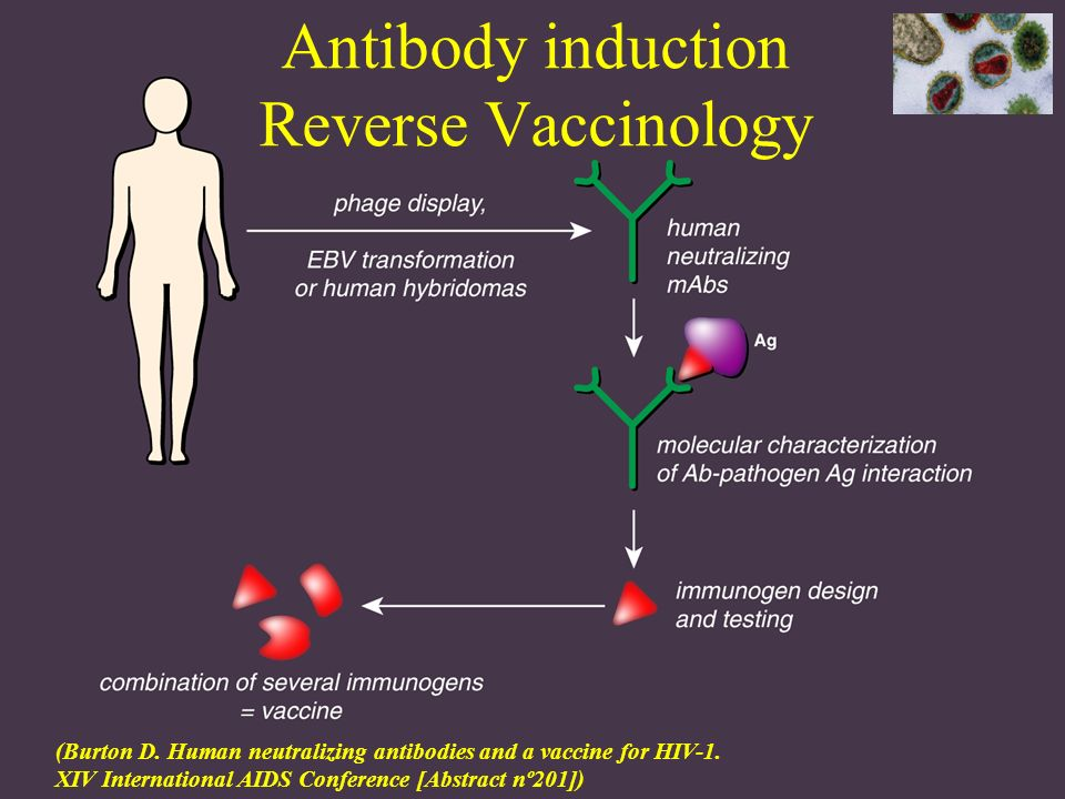 Antibody induction Reverse Vaccinology