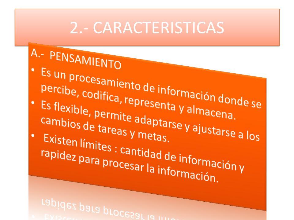 2.- CARACTERISTICAS A.- PENSAMIENTO