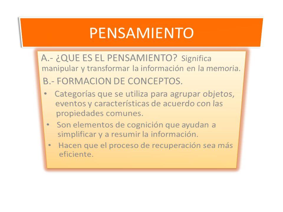 PENSAMIENTO A.- ¿QUE ES EL PENSAMIENTO Significa manipular y transformar la información en la memoria.