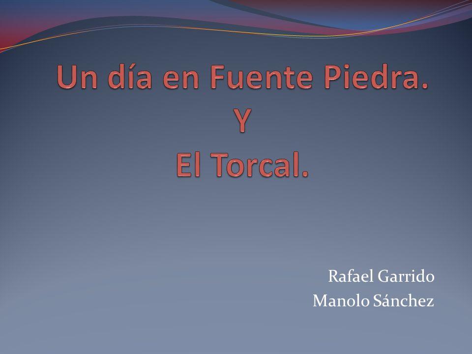 Un día en Fuente Piedra. Y El Torcal.