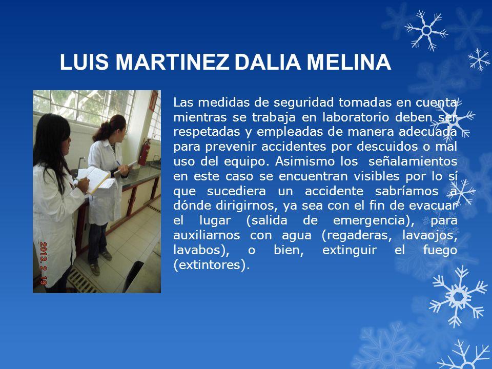 LUIS MARTINEZ DALIA MELINA