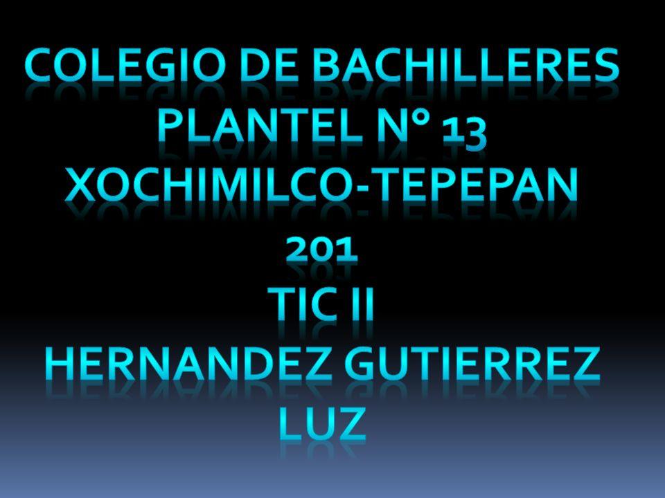 COLEGIO DE BACHILLERES HERNANDEZ GUTIERREZ LUZ