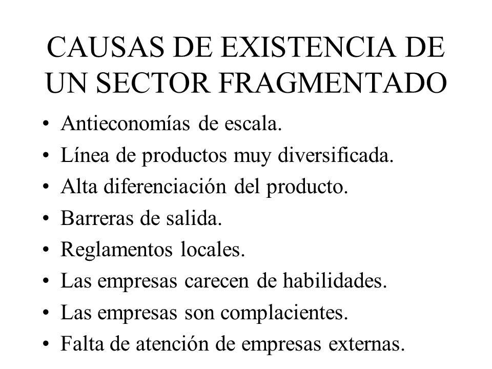 CAUSAS DE EXISTENCIA DE UN SECTOR FRAGMENTADO