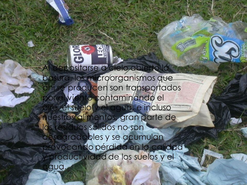 Al depositarse a cielo abierto la basura, los microorganismos que ahí se producen son transportados por el viento contaminando el aire, el suelo y el agua, e incluso nuestros alimentos, gran parte de los residuos sólidos no son desagradables y se acumulan provocando pérdida en la calidad y productividad de los suelos y el agua.