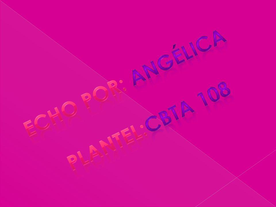Echo por: Angélica Plantel:cbta 108