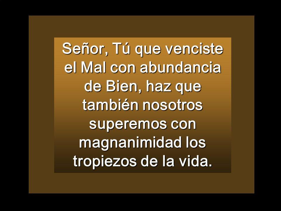 Señor, Tú que venciste el Mal con abundancia de Bien, haz que también nosotros superemos con magnanimidad los tropiezos de la vida.