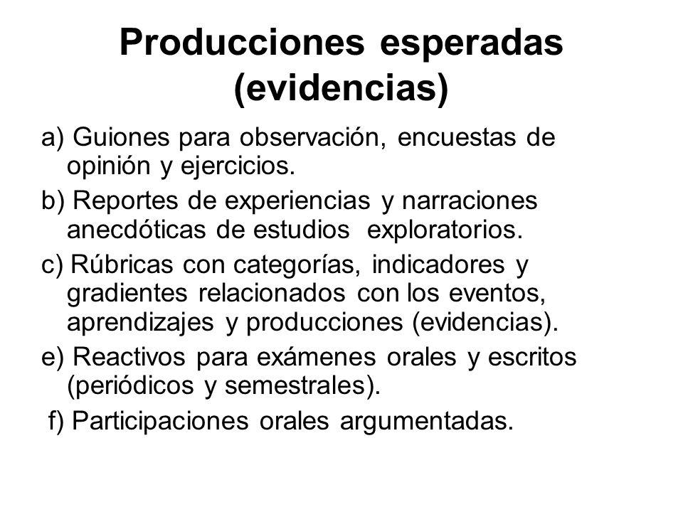 Producciones esperadas (evidencias)