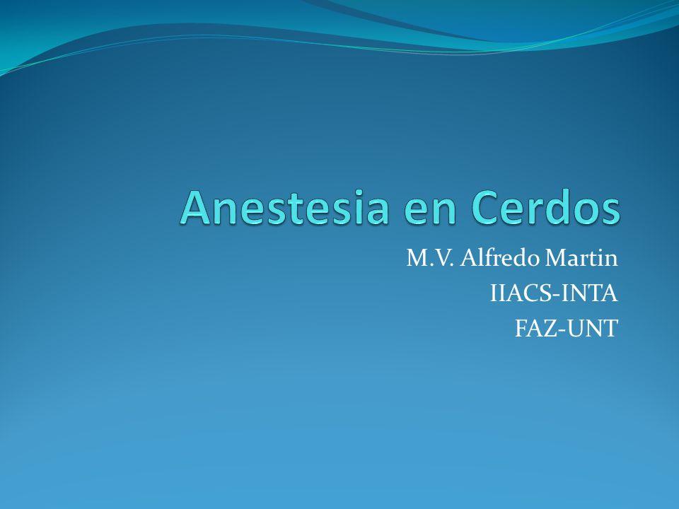 M.V. Alfredo Martin IIACS-INTA FAZ-UNT