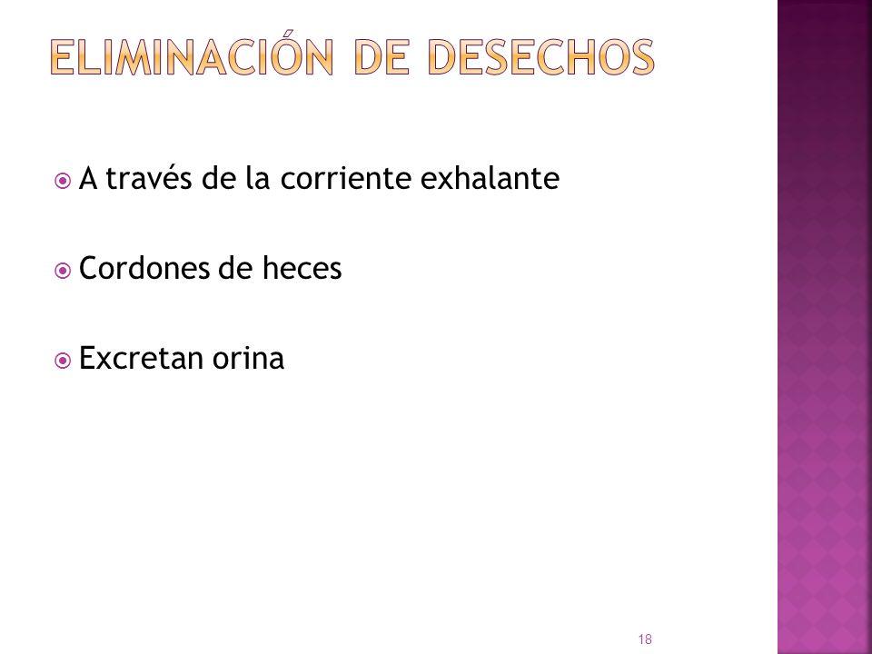 ELIMINACIÓN DE DESECHOS