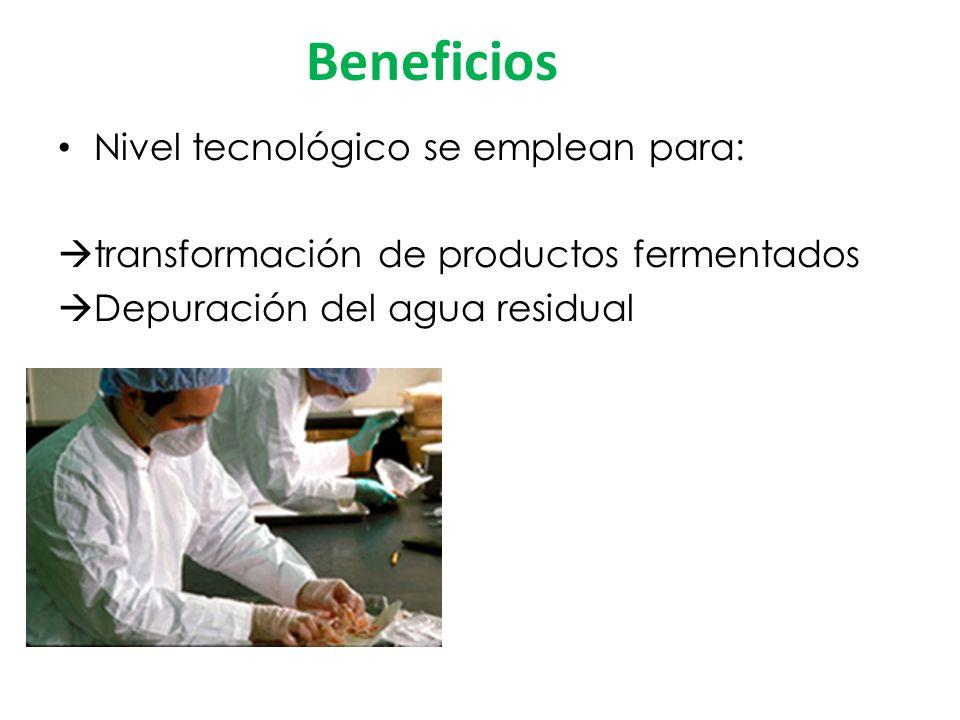 Beneficios Nivel tecnológico se emplean para: