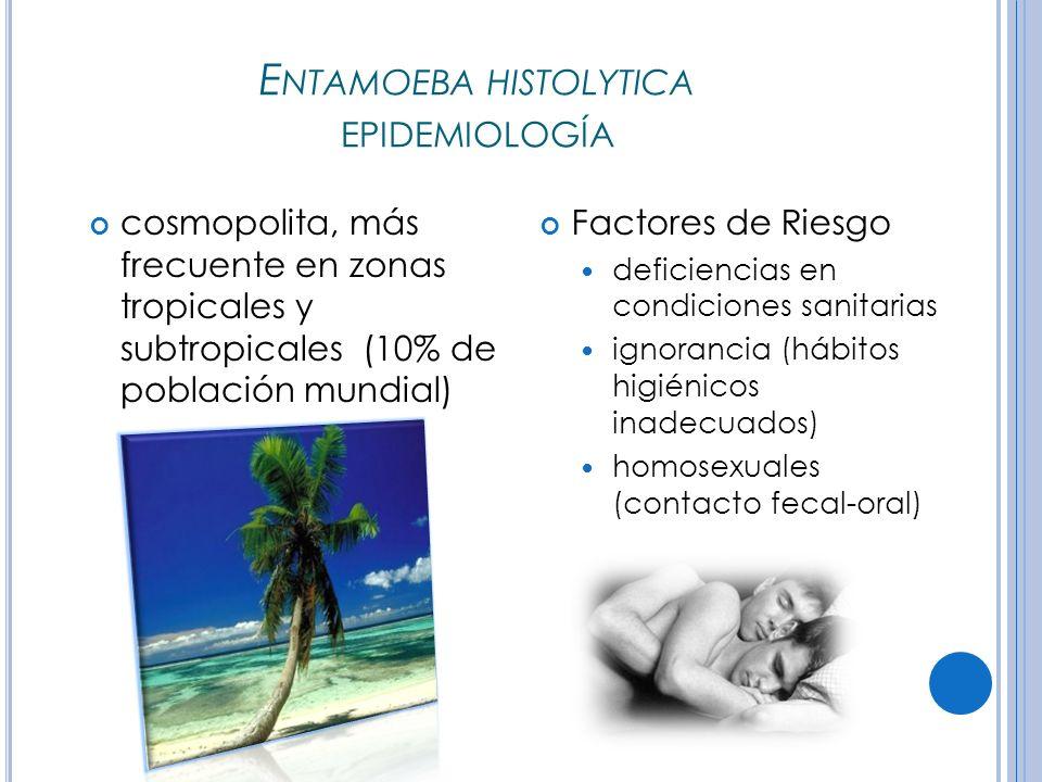 Entamoeba histolytica epidemiología