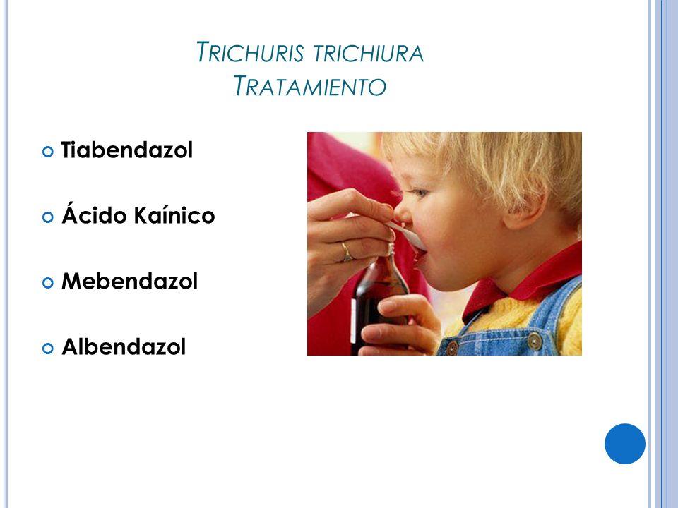 Trichuris trichiura Tratamiento