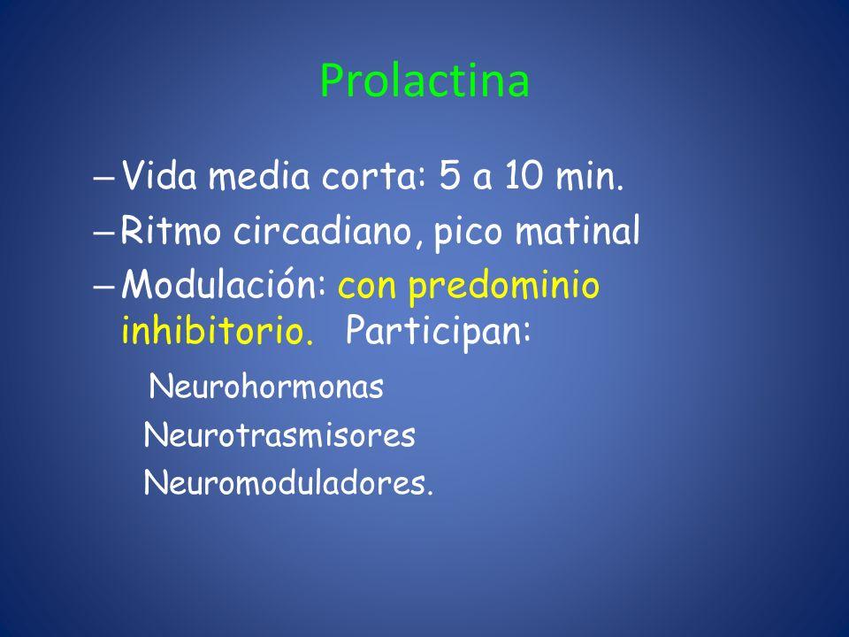 Prolactina Vida media corta: 5 a 10 min.