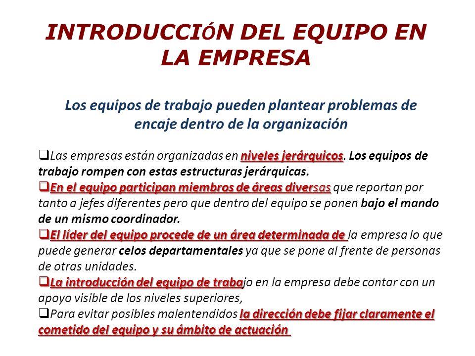 INTRODUCCIÓN DEL EQUIPO EN LA EMPRESA