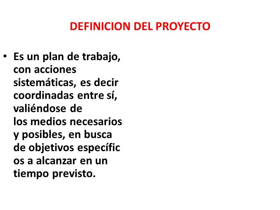 DEFINICION DEL PROYECTO