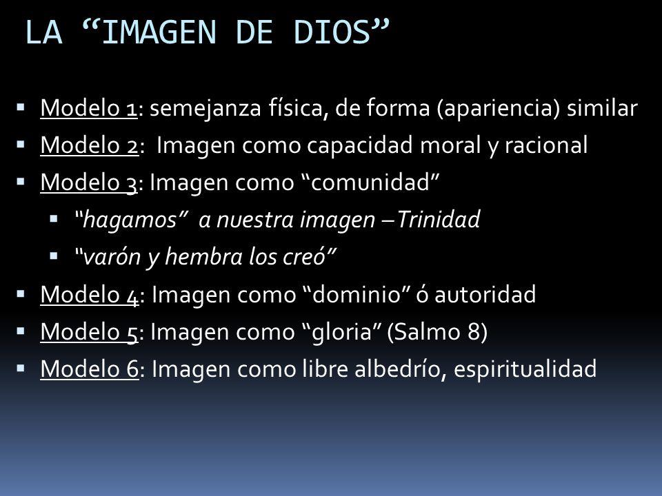 LA IMAGEN DE DIOS Modelo 1: semejanza física, de forma (apariencia) similar. Modelo 2: Imagen como capacidad moral y racional.