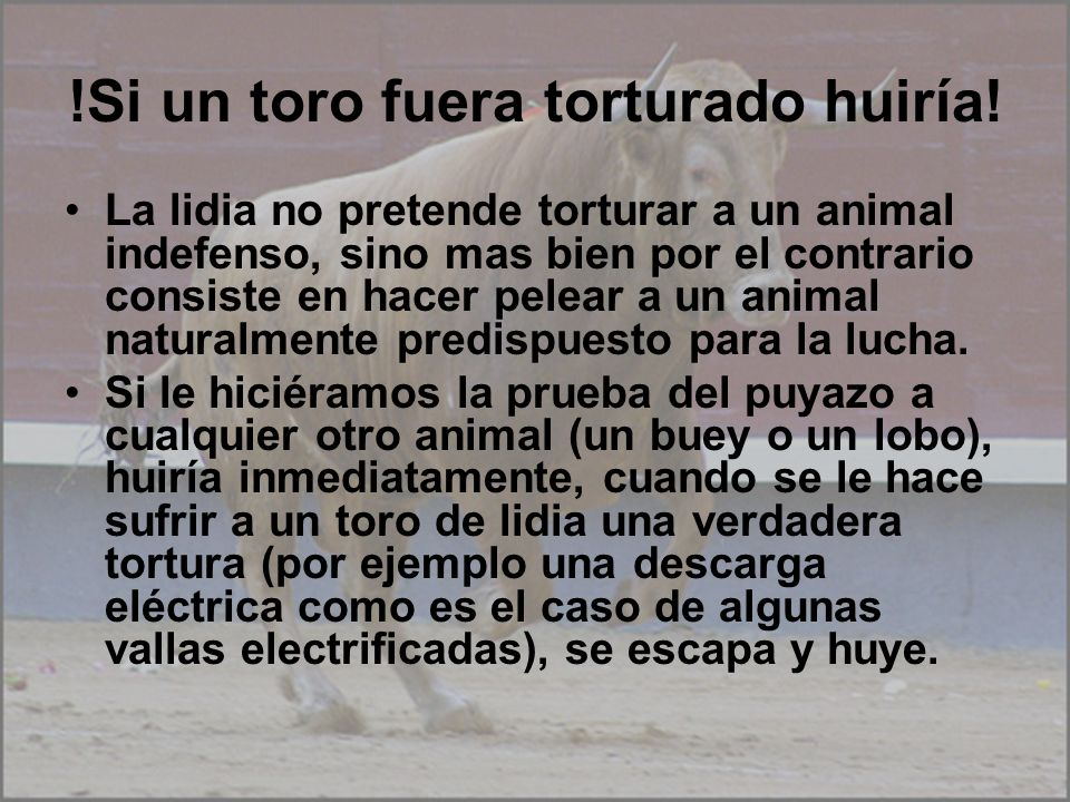 !Si un toro fuera torturado huiría!