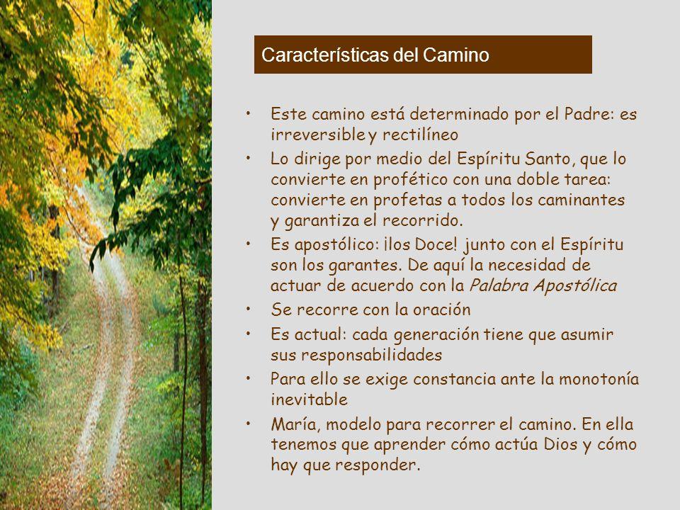 Características del Camino