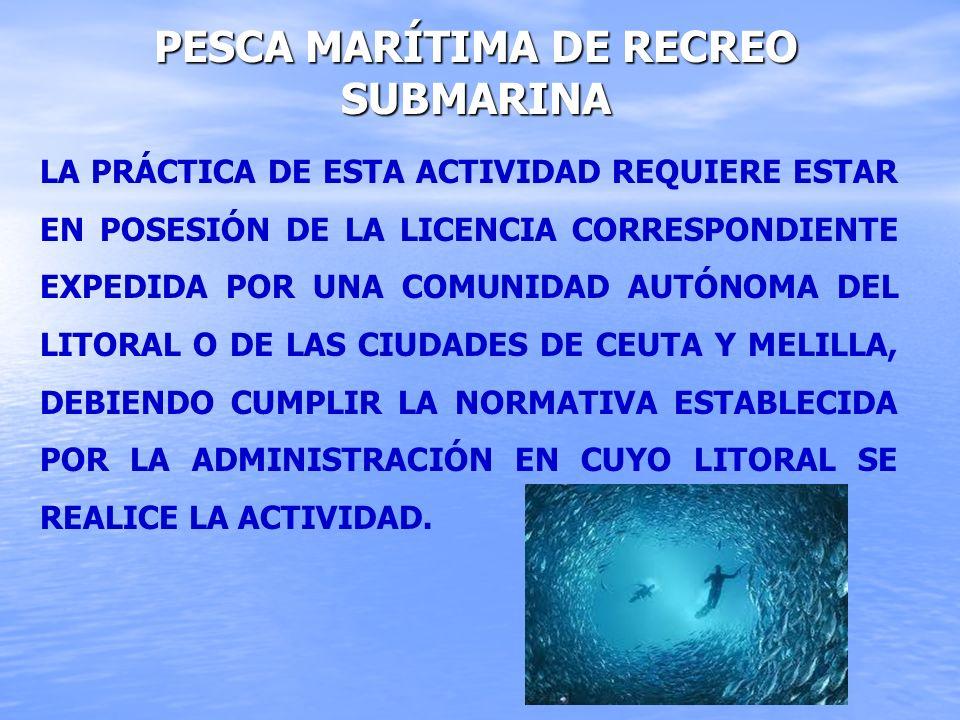 Pesca marítima de recreo submarina