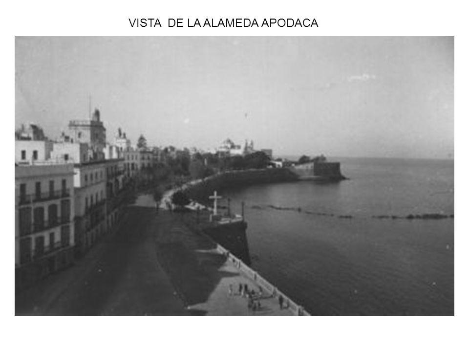 VISTA DE LA ALAMEDA APODACA