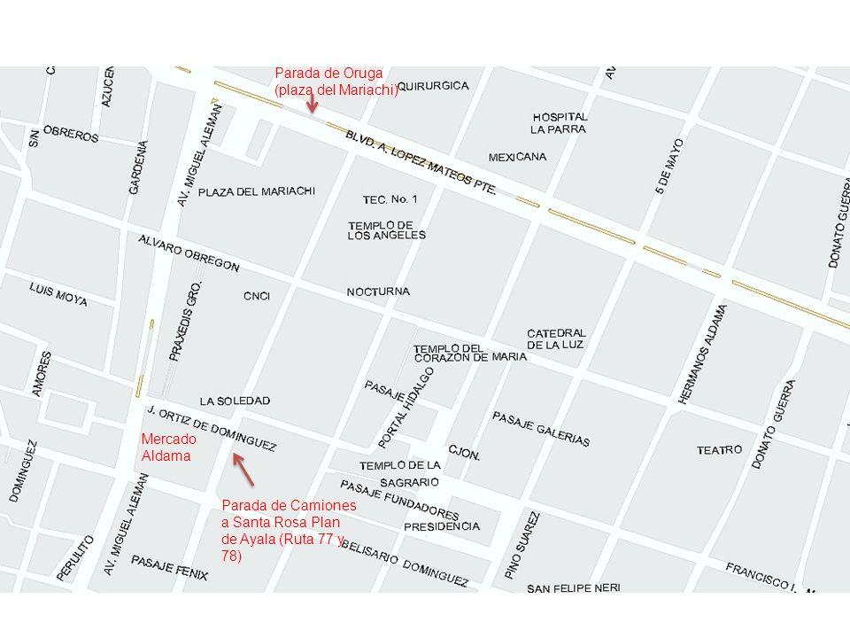 Parada de Oruga (plaza del Mariachi)