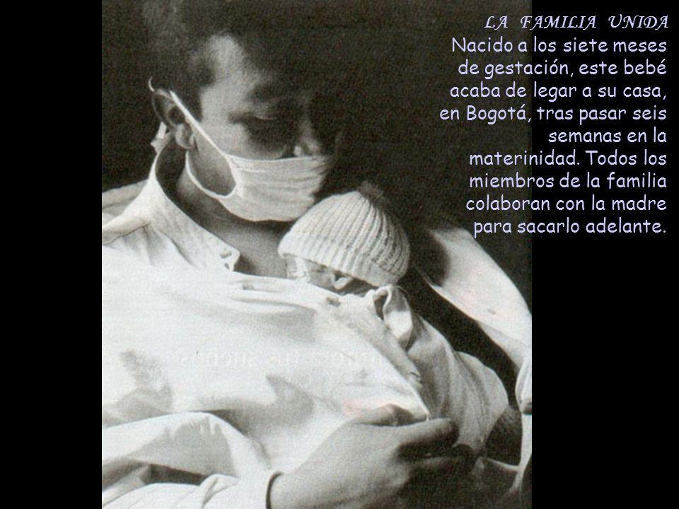 LA FAMILIA UNIDA Nacido a los siete meses de gestación, este bebé acaba de legar a su casa, en Bogotá, tras pasar seis semanas en la materinidad.