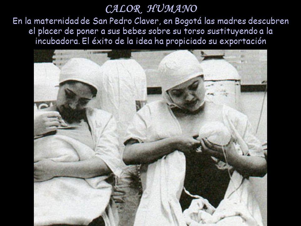 CALOR HUMANO En la maternidad de San Pedro Claver, en Bogotá las madres descubren el placer de poner a sus bebes sobre su torso sustituyendo a la incubadora.
