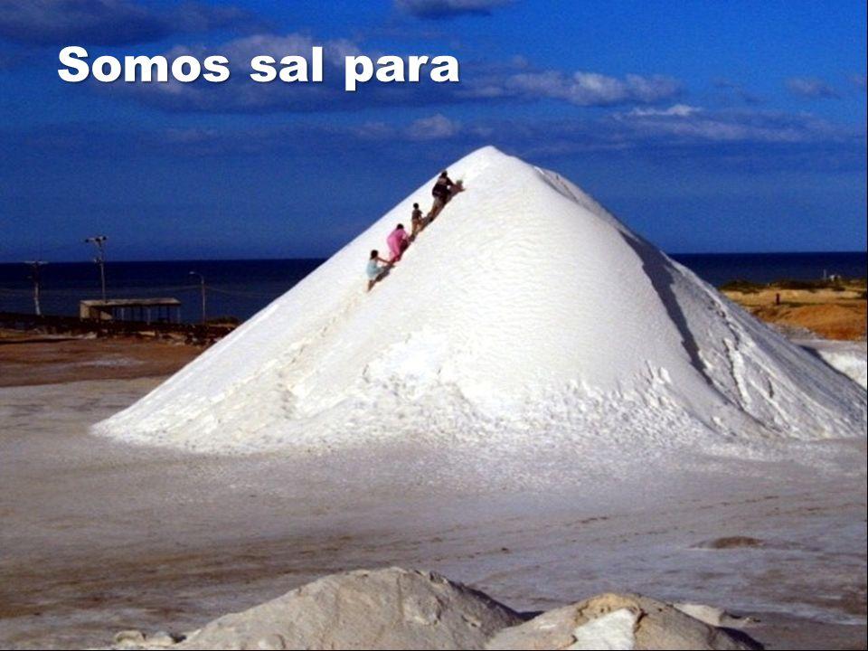 Somos sal para