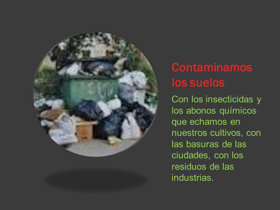 Contaminamos los suelos