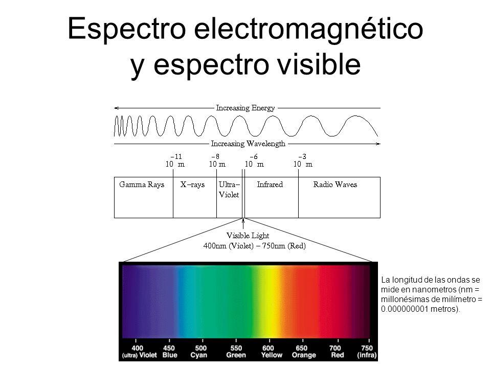 Espectro electromagnético y espectro visible