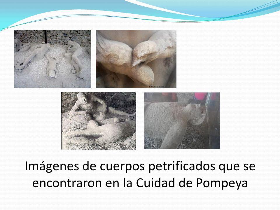 Imágenes de cuerpos petrificados que se encontraron en la Cuidad de Pompeya