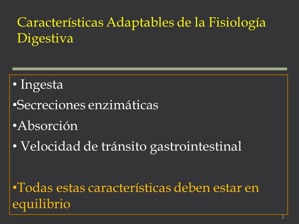 Características Adaptables de la Fisiología Digestiva