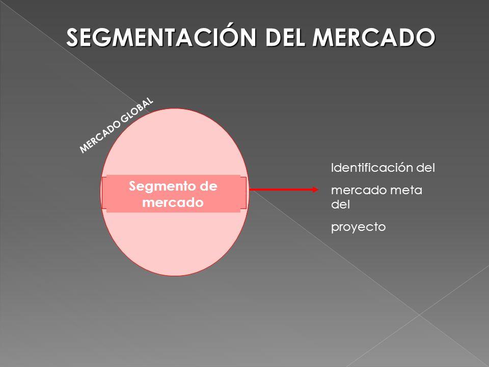 SEGMENTACIÓN DEL MERCADO