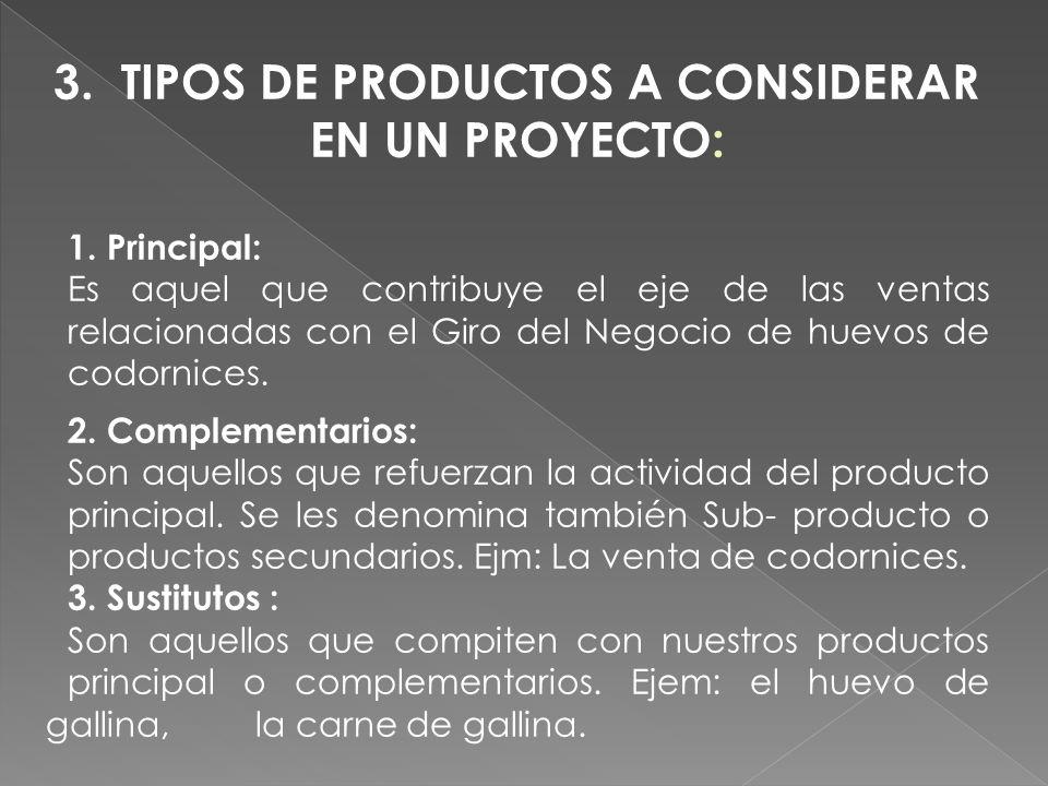 3. TIPOS DE PRODUCTOS A CONSIDERAR EN UN PROYECTO: