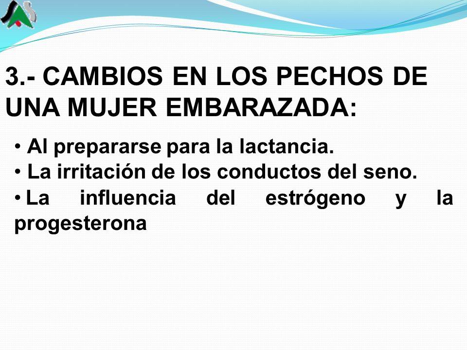 3.- CAMBIOS EN LOS PECHOS DE UNA MUJER EMBARAZADA: