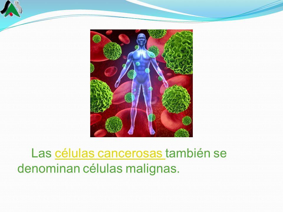 Las células cancerosas también se denominan células malignas.