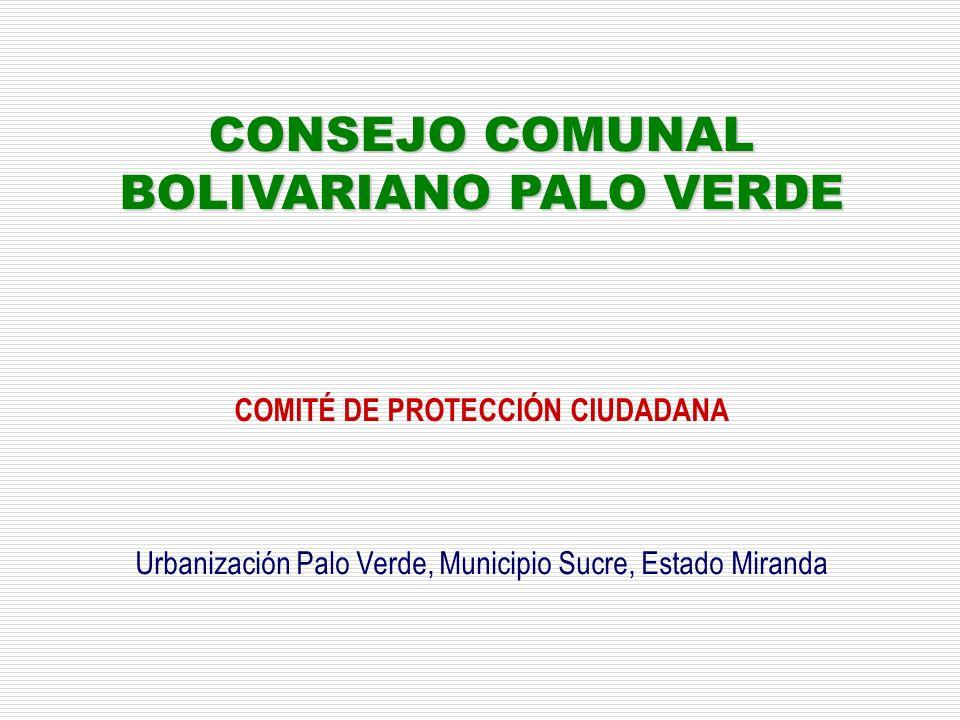 CONSEJO COMUNAL BOLIVARIANO PALO VERDE COMITÉ DE PROTECCIÓN CIUDADANA