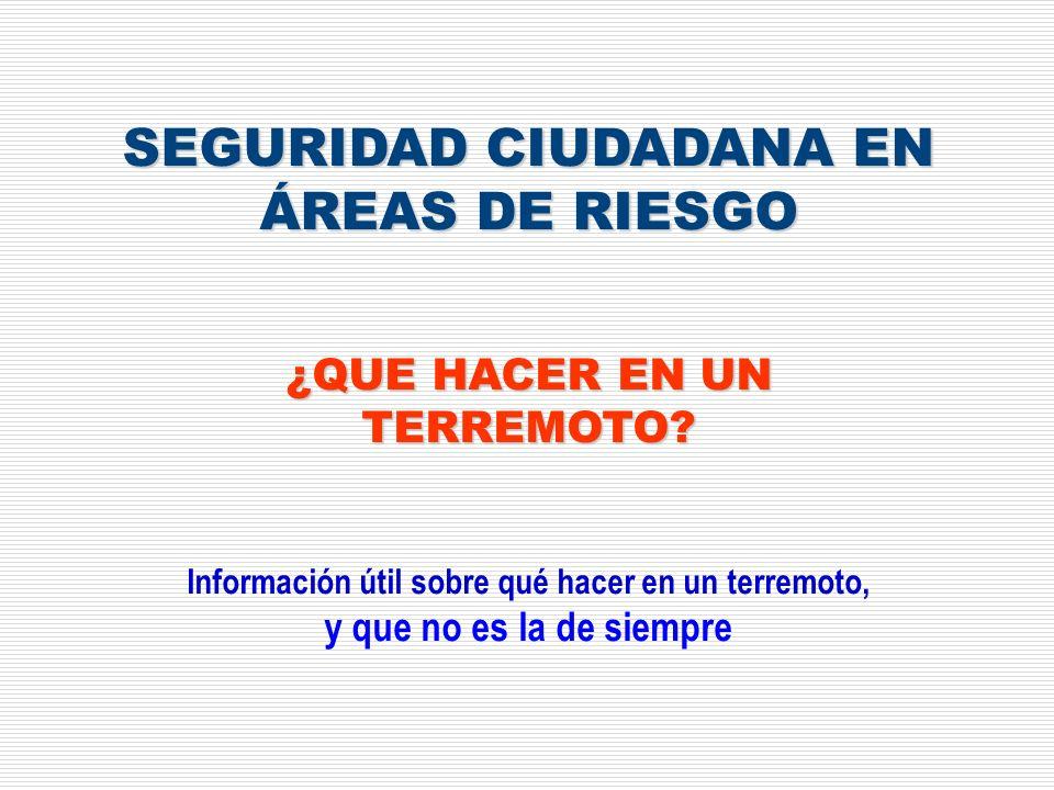 SEGURIDAD CIUDADANA EN ÁREAS DE RIESGO