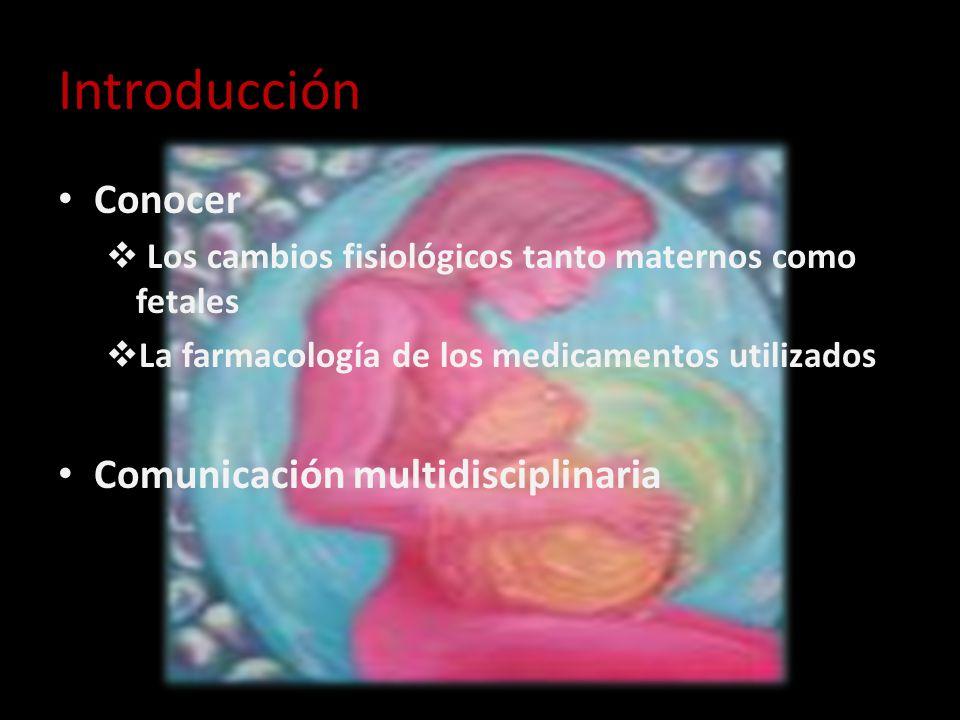 Introducción Conocer Comunicación multidisciplinaria