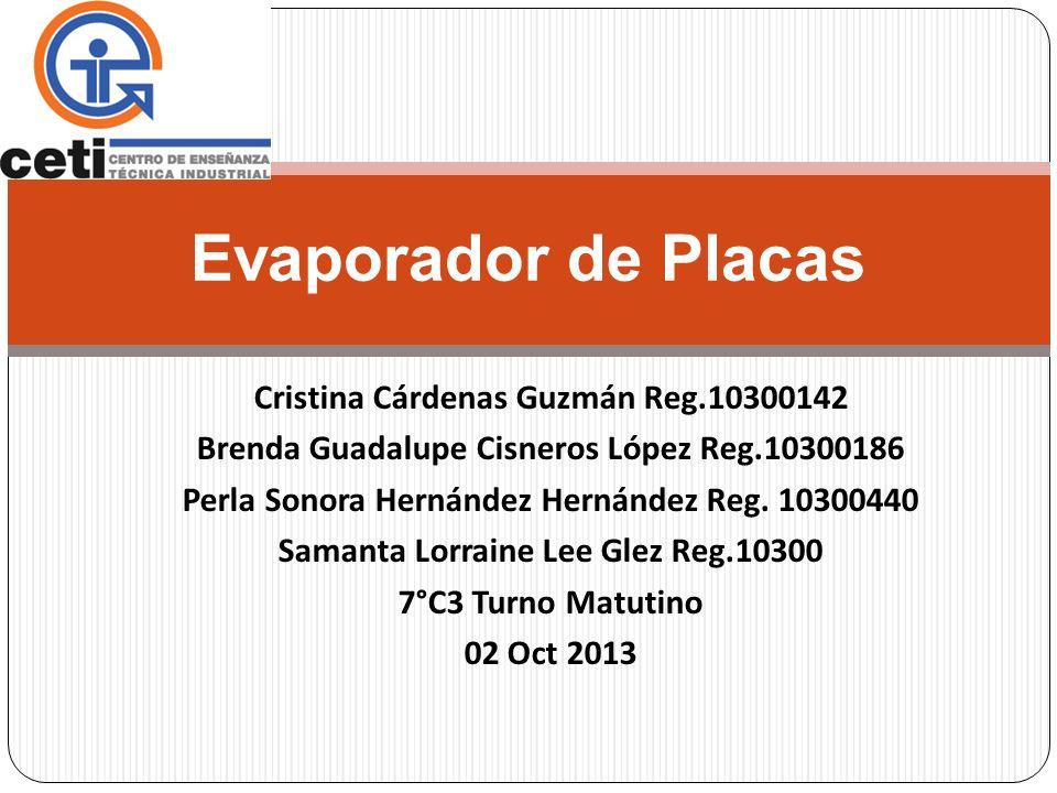 Evaporador de Placas Cristina Cárdenas Guzmán Reg.10300142