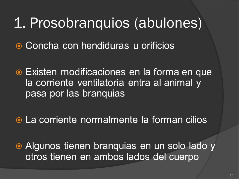 1. Prosobranquios (abulones)