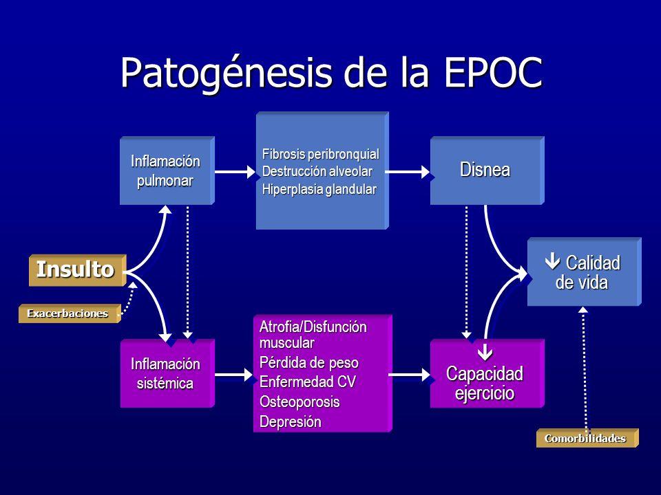 Patogénesis de la EPOC Insulto Disnea  Calidad de vida