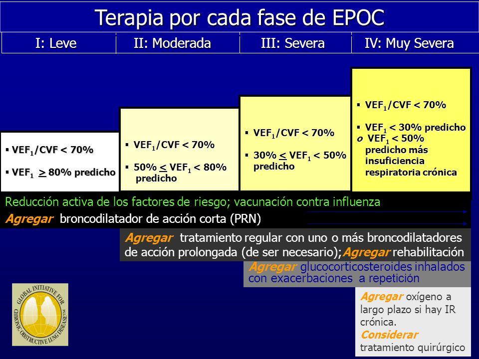 Terapia por cada fase de EPOC